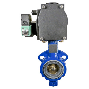 "Butterfly Valve, 2-1/2"", Spring Return"